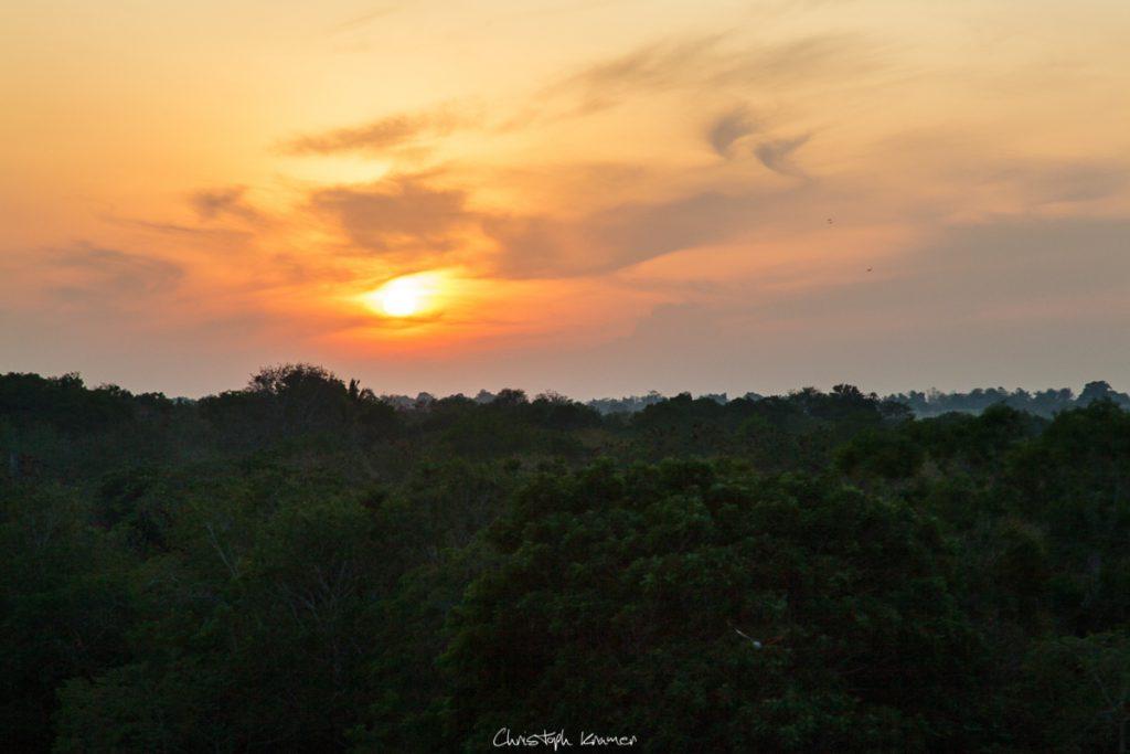 Sonnenaufgang im Udawalawe Nationalpark