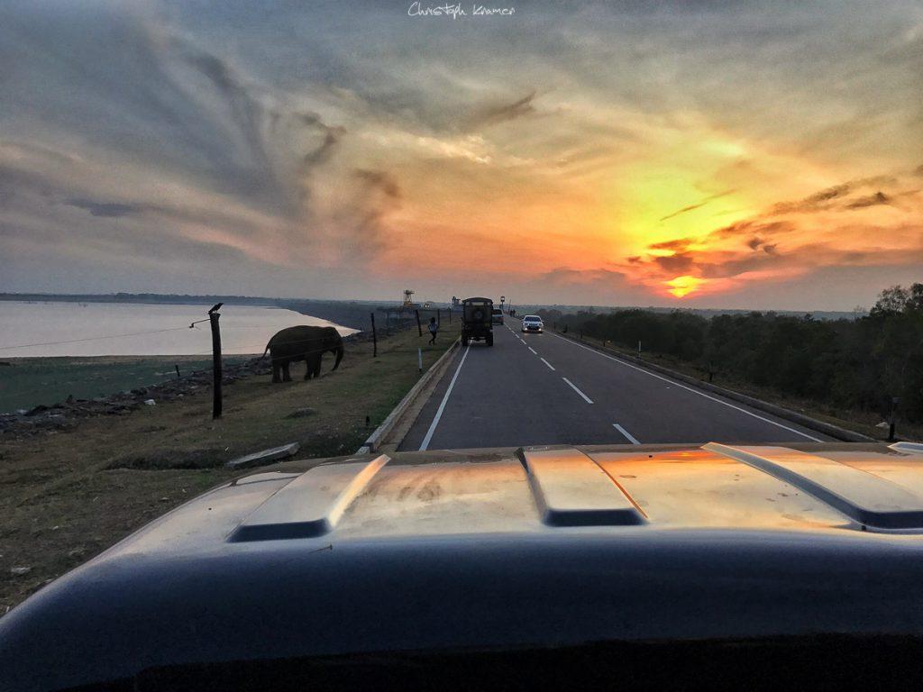 iPhone Shot vom Sonnenaufgang in Udawalawe