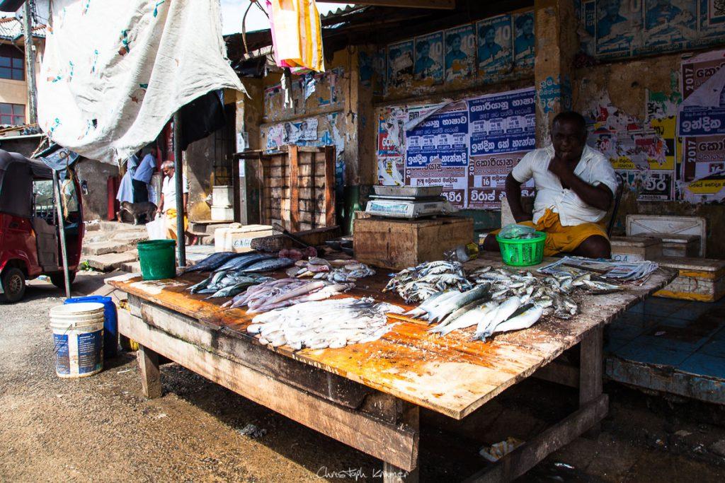 Fischverkäufer auf dem Wochenmarkt von Tangalle