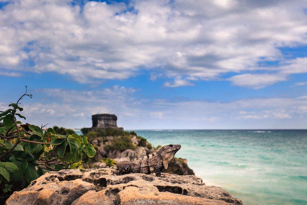Ruinen von Tulum