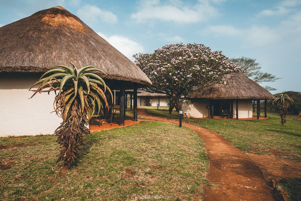 Zululand Safari Lodge - Hluhluwe