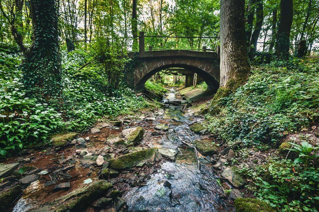 Brücke am Fuß der Klingelsbach-Schlucht