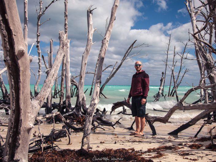 naturbelassener Karibik Strand