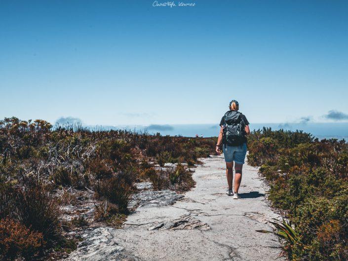 Unterwegs auf dem Tafelberg