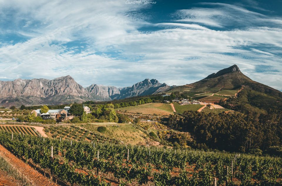 Auf Weinprobe in Stellenbosch