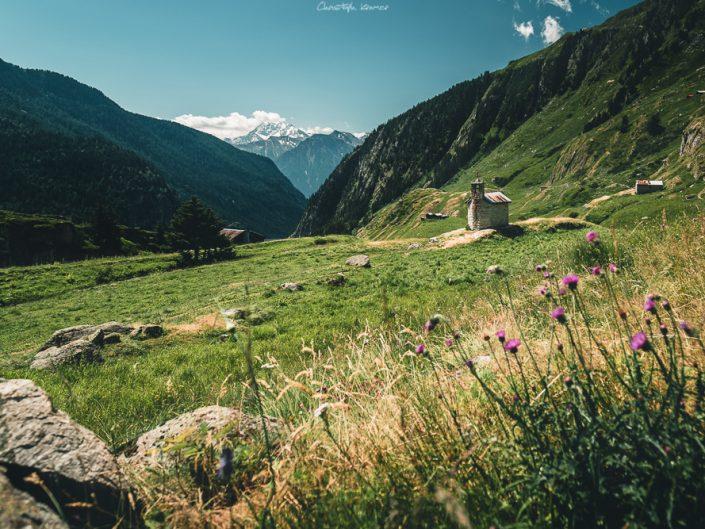 Panorama über die Almwiesen