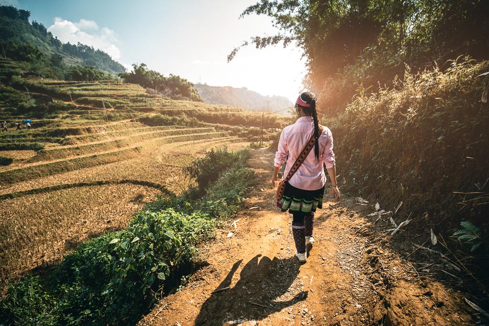 Linh führt uns durch die Reisfelder