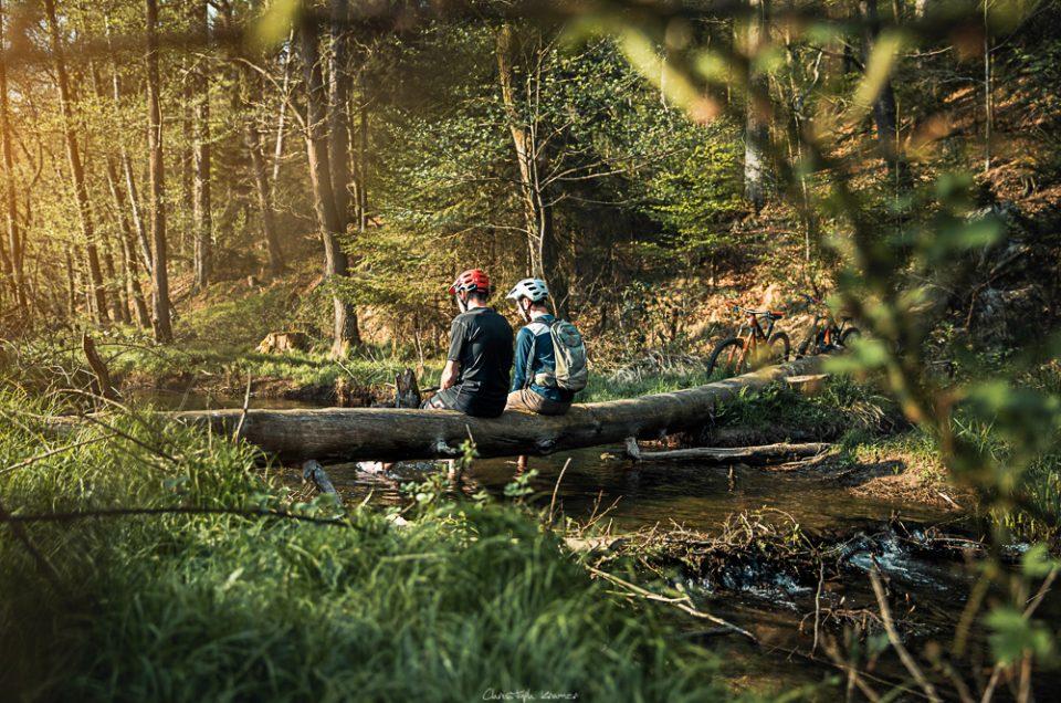 Feierabend Runde – Spessart Forest